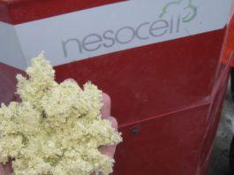 Fiocchi di cellulosa come isolanti per l'edilizia: è l'idea di Nesocell, una start up piemontese con sede a Torino.